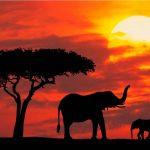 Scoprendo il Sudafrica