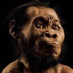 Homo naledi, l'ultimo anello dell'evoluzione umana?