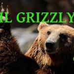 L'Orso Grizzly | Descrizione Animale